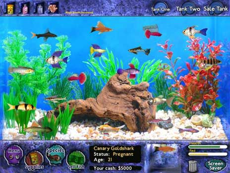 Download fish tycoon for free at freeride games for Free online fishing games